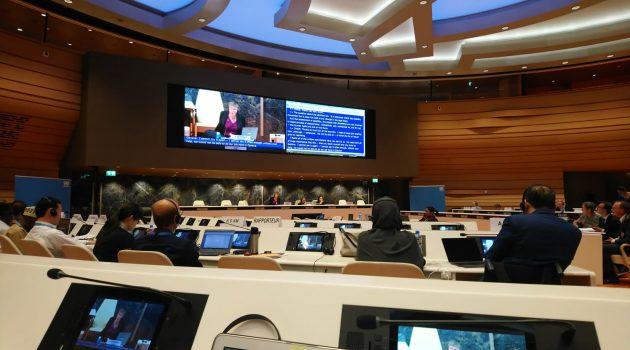 Statement vor UN-Ausschuss über die Rechte von Menschen mit Behinderungen